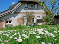 Ferienhaus Sonnenwinkel unterm Reetdach mit Sauna und Kamin in Sellin (Ostseebad) - kleines Detailbild