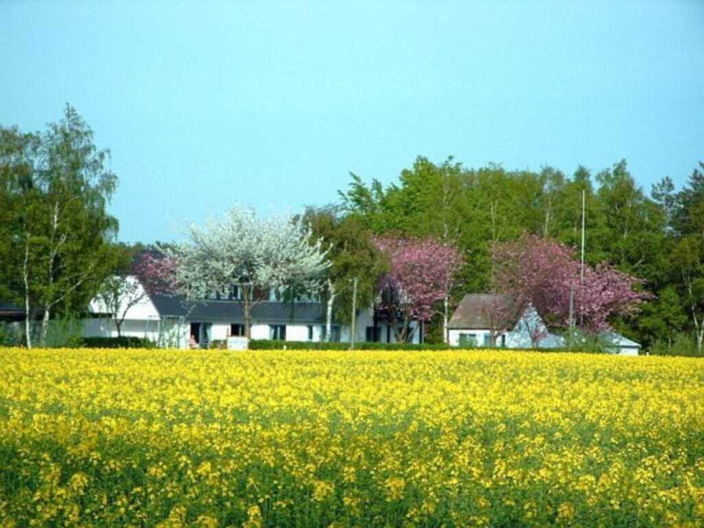 Rügen-Fewo u. Pension 93, aTyp 1.3 EZ