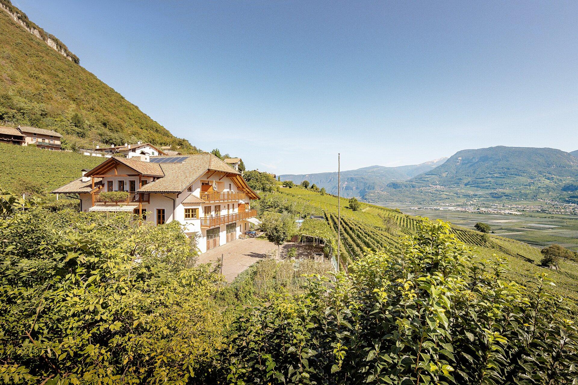 Inmitten von Weinreben und Bergen