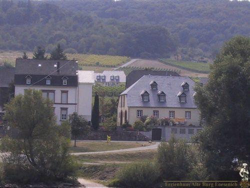 Zusatzbild Nr. 11 von Ferienhaus 'Alte Burg Lösenich'