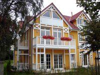 NEU: Uns Strandhus, Strandmuschel in Kühlungsborn (Ostseebad) - kleines Detailbild