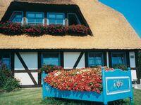 Pension Schwalbennest, Reethaus 52 qm in Ribnitz-Damgarten - kleines Detailbild