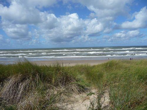 Dünen und Meer bei Petten aan Zee