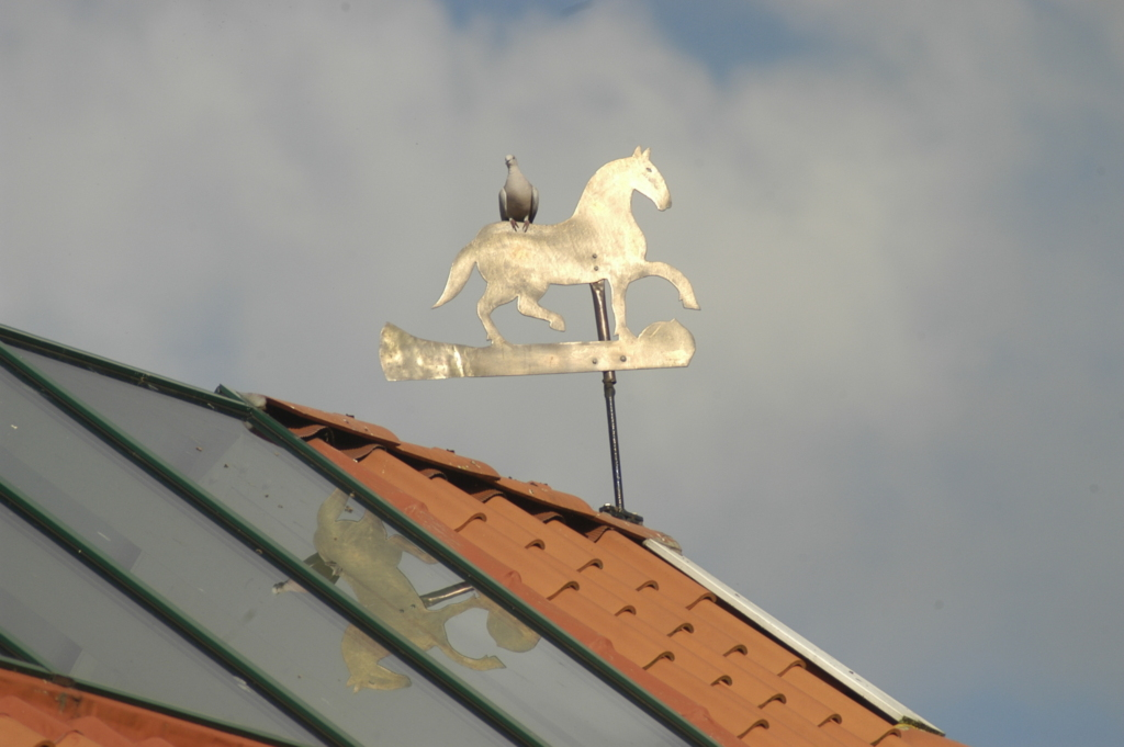 Amtmannshaus Greetsiel, 14 Typ D - Whg. Visquard