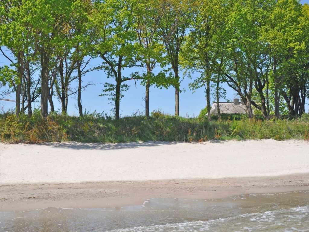 Reethus am Strand F503 Haushälfte 1 mit Strandzuga