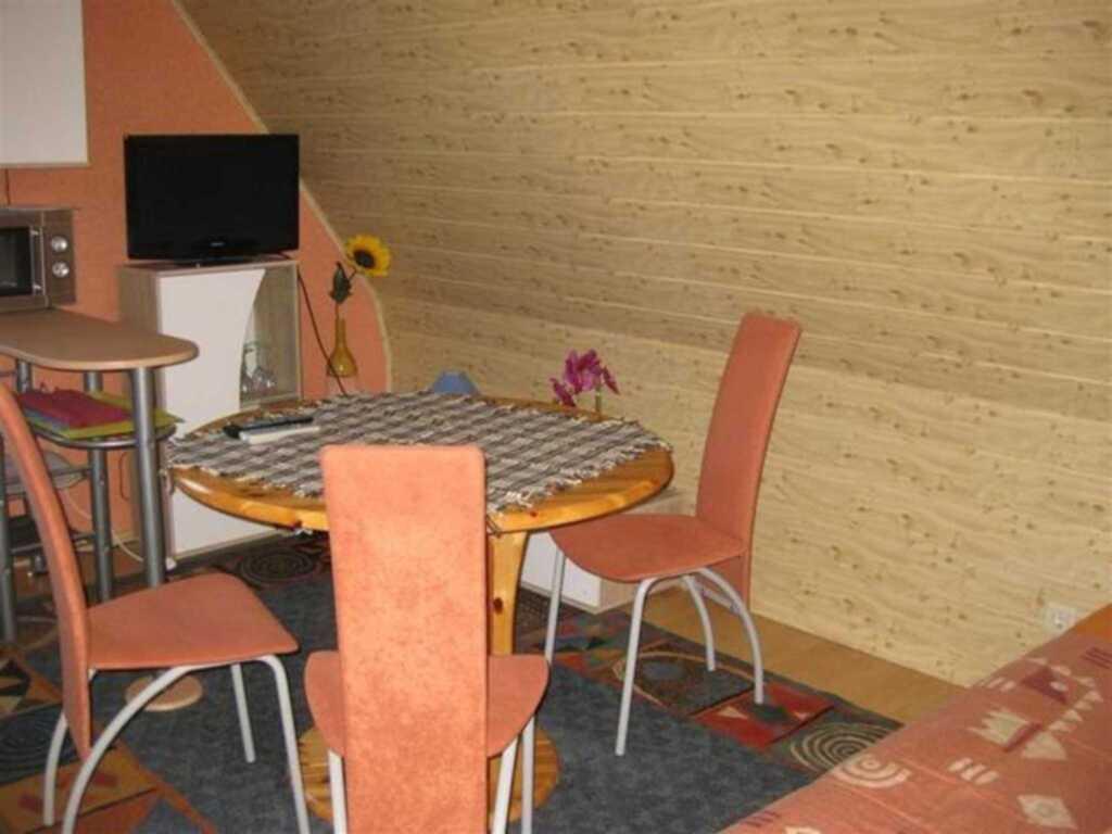 Haus Birkenhügel mit kleiner Tierwelt, Ferienwohnu