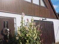 Ferienwohnung Rochow, Ferienwohnung in Kröslin bei Wolgast - kleines Detailbild