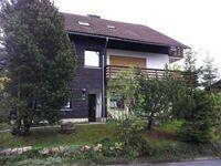 Haus Sonnenschein, Ferienwohnung in Sankt Andreasberg - kleines Detailbild