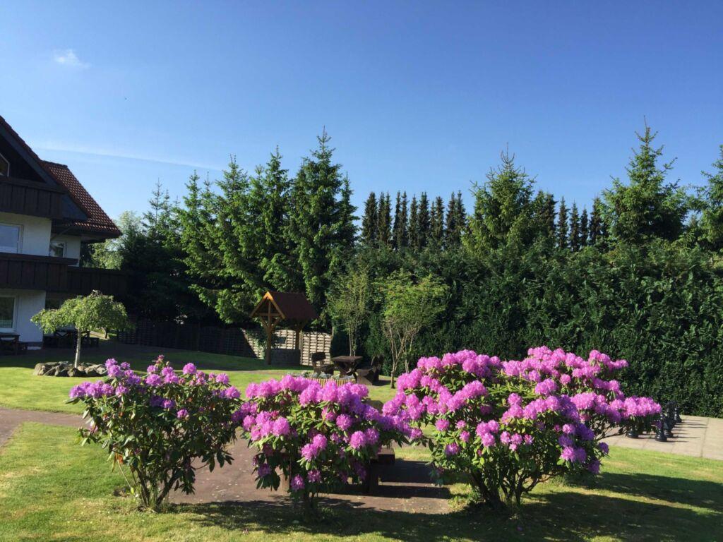 Haus Jasmin, Wohnung 5 'Osterglocke'