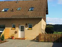 Haus Schwalbennest, Ferienhaus Schwalbennest in Buntenbock - kleines Detailbild