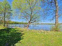 Ferienhäuser Zechlinerhütte SEE 4740, SEE 4742 - Ferienhaus 2 in Rheinsberg OT Zechlinerhütte - kleines Detailbild