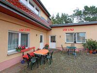 Ferienhäuser Zinnowitz USE 1760, USE 1762 Fewo2 in Zinnowitz (Seebad) - kleines Detailbild