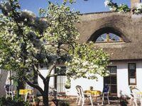 Ferienreeddachhaus Issy Krause, Appartment 3 in Karlshagen - kleines Detailbild