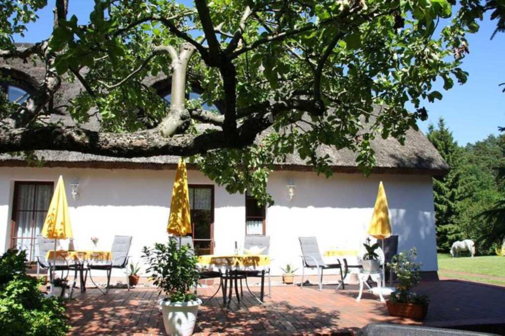 Ferienreeddachhaus Issy Krause, Ferienwohnung 1