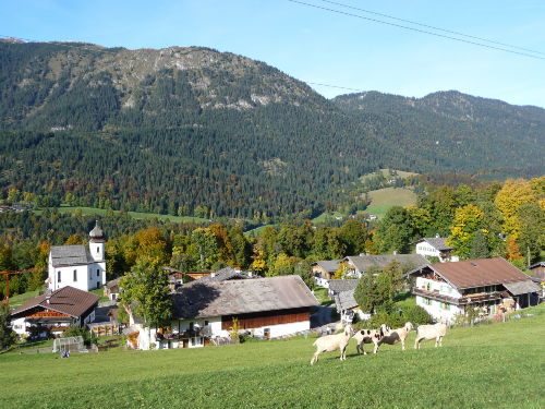 Bergdorf Wamberg