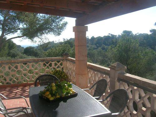 Terrasse mit Meerblick Cala Salmonia