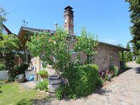 Am Rieck - Ferienhaus 'Kurf�rstenstra�e', Ferienhaus 'Kurf�rstenstra�e', Zempin in Zempin (Seebad) - kleines Detailbild