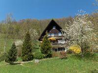 Ferienwohnung Frechehof in Bad Peterstal-Griesbach - kleines Detailbild
