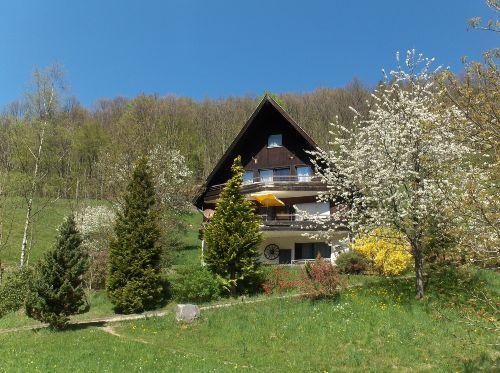 Haus im Frühling