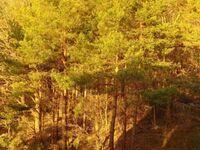 Haus 'Bellevue'  Ferienwohnung mit Seeblick SE-BOG WE 22, Ferienwohnung WE 22 in Sellin (Ostseebad) - kleines Detailbild