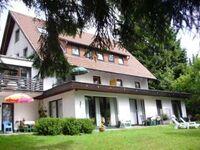 Haus Waldblick, Ferienwohnung Hochparterre klein (außen) in Bad Sachsa - kleines Detailbild