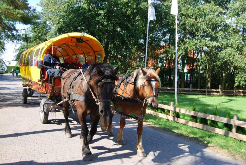 Ferienwohnung Hiddensee in Vitte, App 2