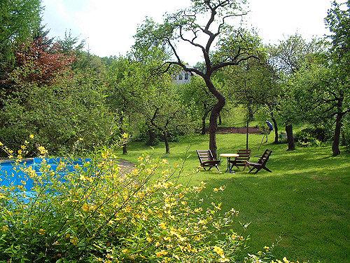 Garten mit Pool und großer Liegewiese