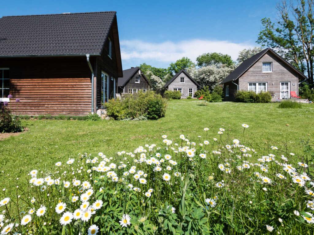 Bei Zingst: Schmidt's Ferienhäuser, Ferienhaus gro