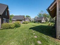 Bei Zingst: Schmidt's Ferienhäuser, Ferienhaus grün in Lüdershagen - kleines Detailbild