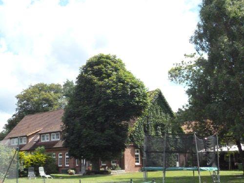 Lütenshof Gartenblick