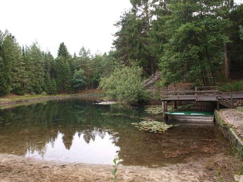 Natursee und Waldgrundstück