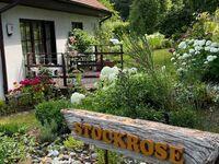 TSS  Ferienwohnung Stockrose, FW in Lohme OT Nipmerow - kleines Detailbild
