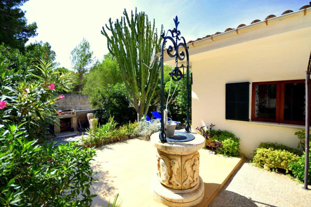 44221 Ferienhaus Cactus