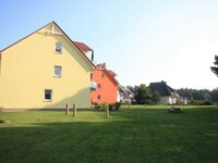 Ferienpark Streckelsberg *10 Min. zum Ostseestrand*, Sturmvogel 312 in Koserow (Seebad) - kleines Detailbild