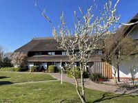 Appartementhotel Mare Balticum -GmbH & Co KG, 2-Raum-App., Nr.22 in Sagard auf Rügen - kleines Detailbild