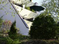 Ferienwohnung 'Kleine Fluchten' in Sankt Andreasberg - kleines Detailbild