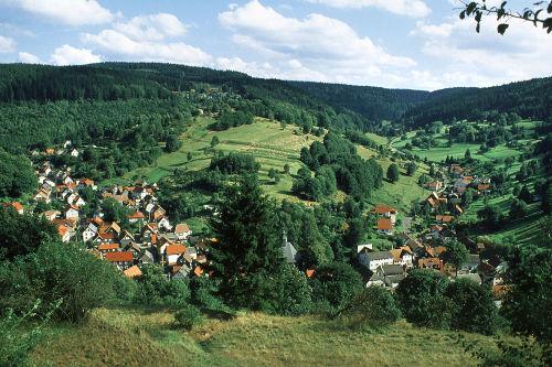 Blick auf den Ort Gießübel