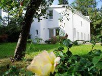 (Brise) Gartenhaus Brunnenstraße, Gartenhaus Fewo 1 in Heringsdorf (Seebad) - kleines Detailbild