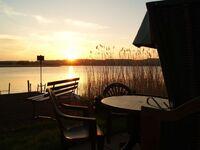 Ferienwohnung am See, 2 Raum Ferienwohnung mit Seeblick in Seedorf - kleines Detailbild