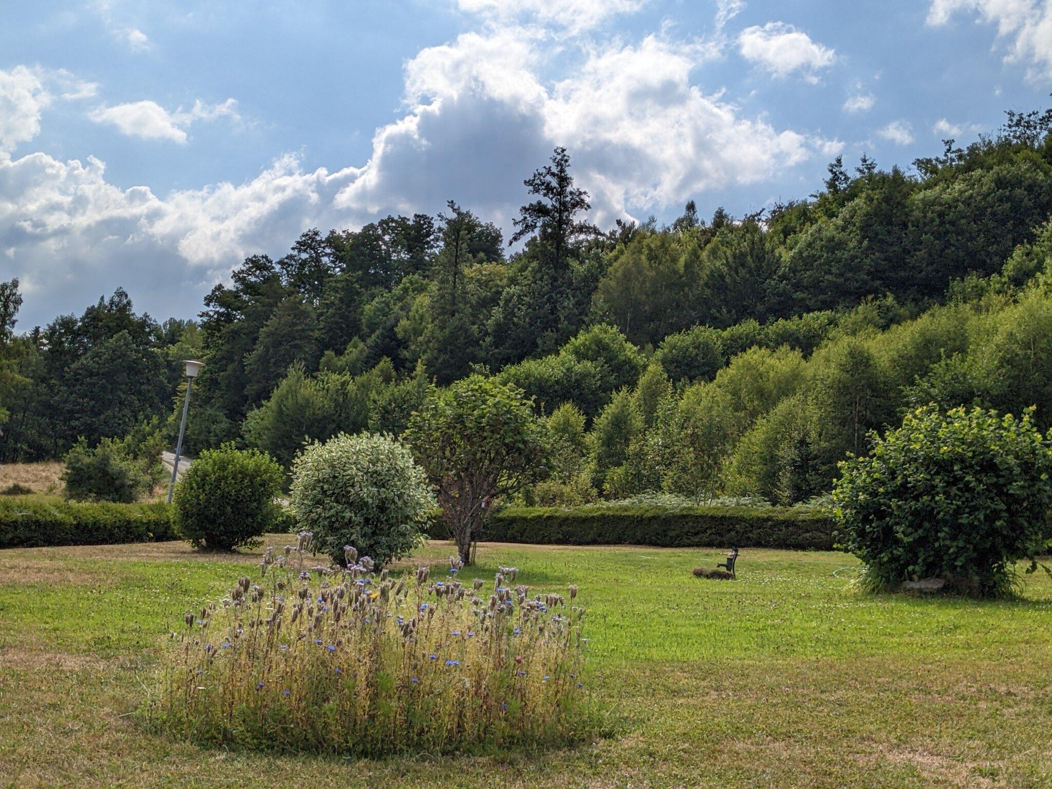 Blütenpracht am Kurparkeingang