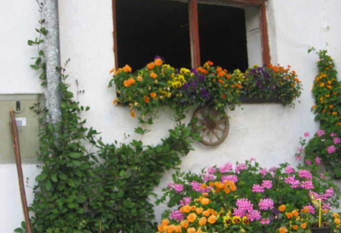 Gottenbichlhof, Ferienwohnung Jägerkamp