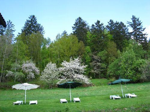 Umgebung von Ferienwohnanlage Moosbach