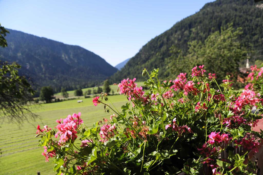 Pension M�hlbauer, DZ (online)