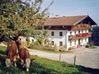 Hof Schnellsried, FW Auerberg in Fischbachau - kleines Detailbild