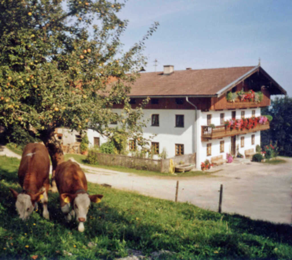 Hof Schnellsried, FW Auerberg