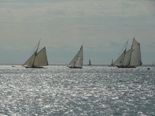 Regatta vor Imperia