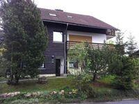 Haus Sonnenschein, Appartement in Sankt Andreasberg - kleines Detailbild