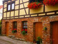 Ferienwohnung Vogelnest in Erfurt - kleines Detailbild
