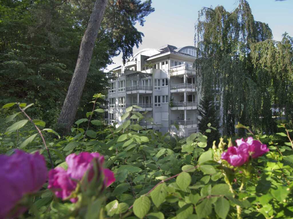 (Maja23)Villa Darja, Darja 13