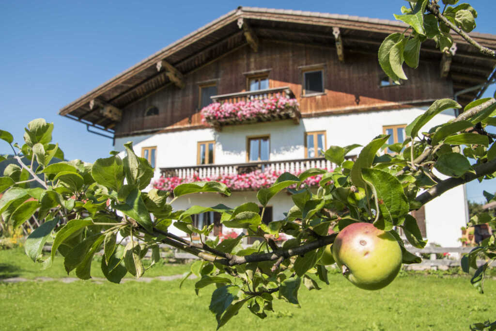 Bernlochner Veronika, Ferienwohnung Bergblick
